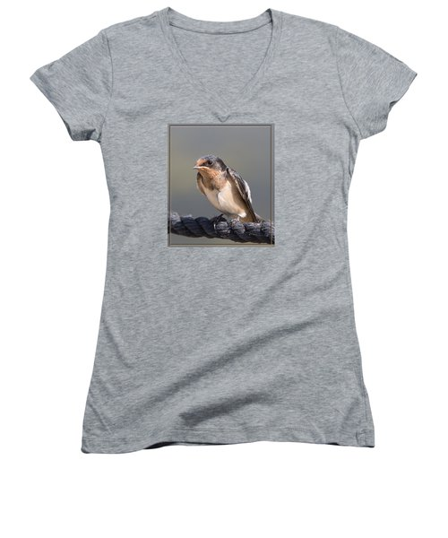 Barn Swallow On Rope I Women's V-Neck T-Shirt (Junior Cut) by Patti Deters