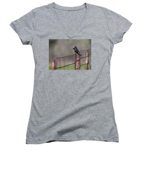 Barn Swallows On The Fence Women's V-Neck T-Shirt (Junior Cut) by Mark Alder