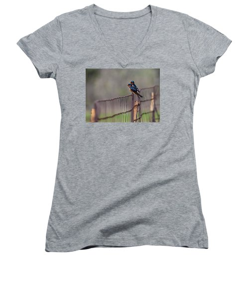 Barn Swallows On The Fence Women's V-Neck T-Shirt