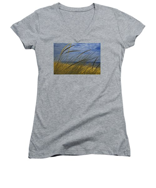 Beach Grass On A Sand Dune At Glen Arbor Michigan Women's V-Neck T-Shirt