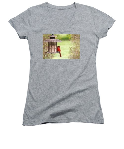 Women's V-Neck T-Shirt (Junior Cut) featuring the photograph Beautiful Cardinal by Trina  Ansel