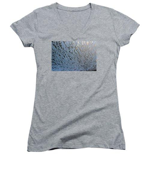 Beautiful Chaos Women's V-Neck T-Shirt