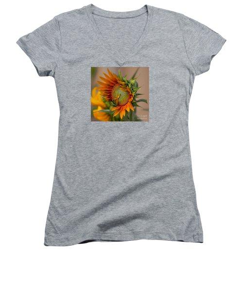 Women's V-Neck T-Shirt (Junior Cut) featuring the photograph Beautiful Sunflower by John  Kolenberg