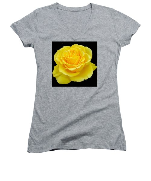 Beautiful Yellow Rose Flower On Black Background  Women's V-Neck T-Shirt (Junior Cut)
