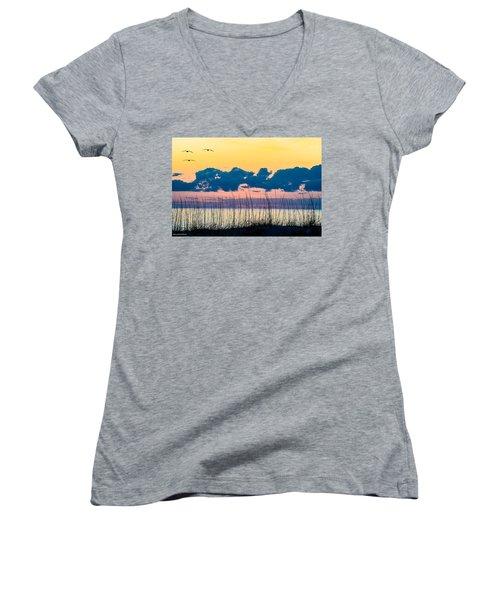 Beauty And The Birds Women's V-Neck T-Shirt