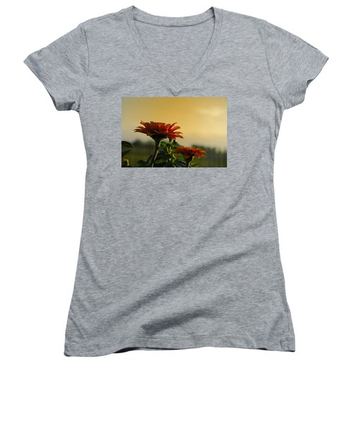 Beauty Of Nature Women's V-Neck T-Shirt (Junior Cut) by Charles Beeler
