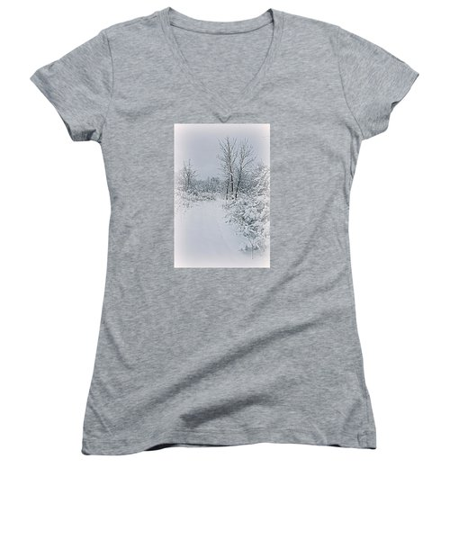 Beauty Of Winter Women's V-Neck T-Shirt (Junior Cut) by Kay Novy