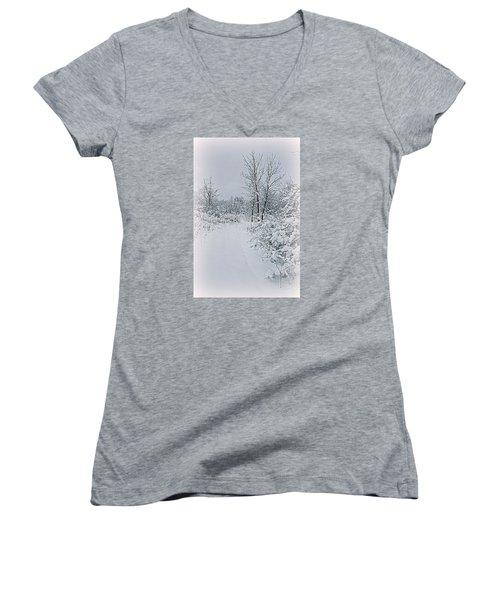 Beauty Of Winter Women's V-Neck T-Shirt