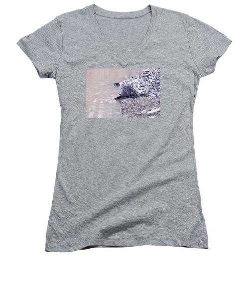 Beaver On Dry Land Women's V-Neck T-Shirt (Junior Cut) by Chris Flees