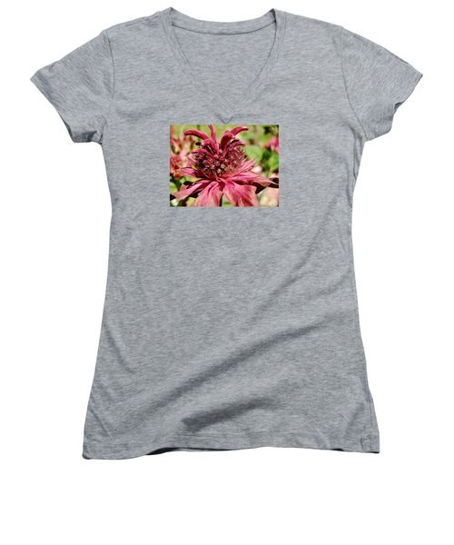 Bee Balm Details Women's V-Neck T-Shirt (Junior Cut) by VLee Watson