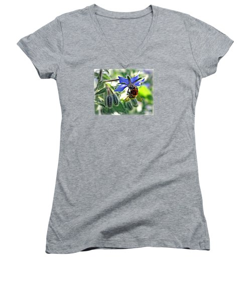 Bee On Borage Women's V-Neck T-Shirt (Junior Cut) by Morag Bates