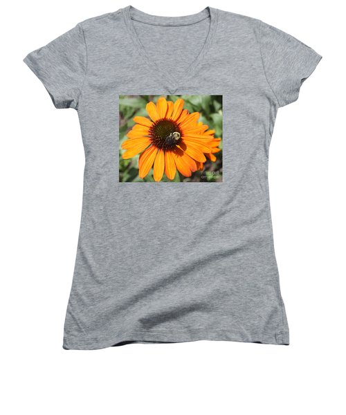 Women's V-Neck T-Shirt (Junior Cut) featuring the photograph Bee On Flower by John Telfer