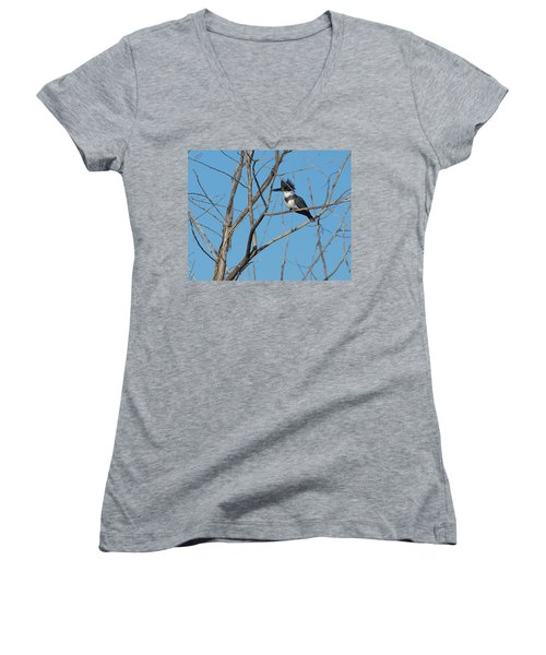 Belted Kingfisher 4 Women's V-Neck T-Shirt