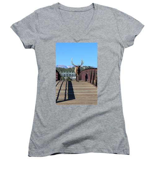 Big Bull On The Bridge Women's V-Neck (Athletic Fit)