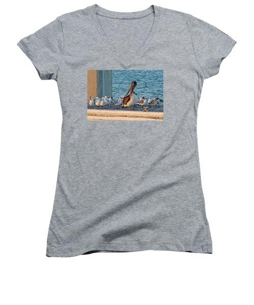 Birds - Among Friends Women's V-Neck T-Shirt