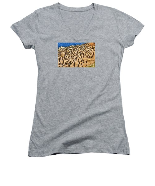 Birds Of A Feather Stick Together Women's V-Neck T-Shirt (Junior Cut) by Jim Carrell