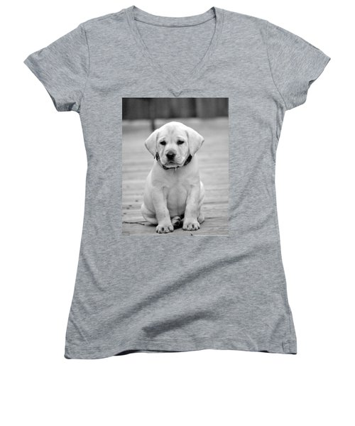 Black And White Puppy Women's V-Neck (Athletic Fit)