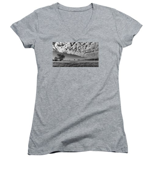 Black And White Wheat Field Women's V-Neck (Athletic Fit)