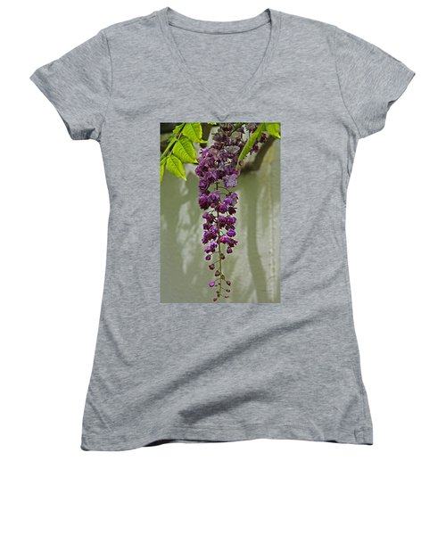 Black Dragon Wisteria Women's V-Neck T-Shirt