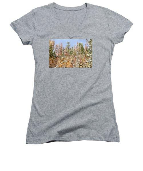 Black Hills Color Palette Women's V-Neck T-Shirt (Junior Cut) by Clarice  Lakota