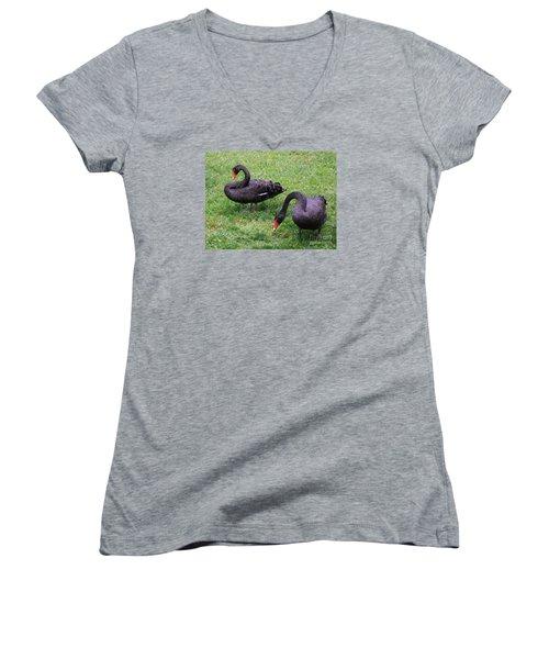 Black Swans Women's V-Neck T-Shirt