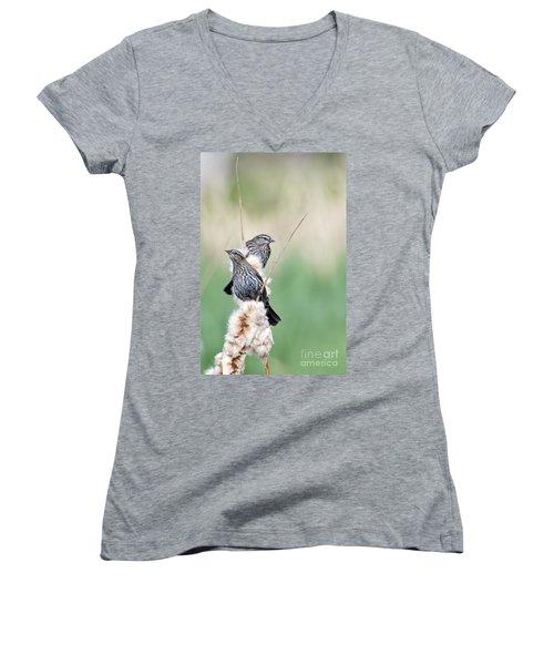 Blackbird Pair Women's V-Neck T-Shirt (Junior Cut) by Mike  Dawson