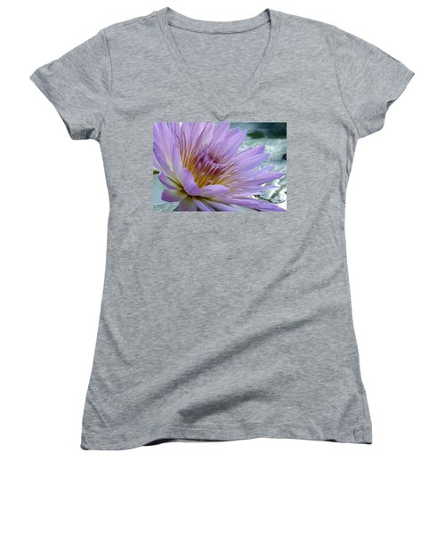 Bloom's Blush Women's V-Neck T-Shirt