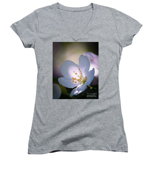 Blossom In The Sun Women's V-Neck T-Shirt (Junior Cut) by David Perry Lawrence