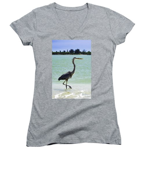 Blue And Green Women's V-Neck