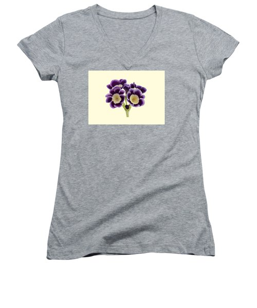 Women's V-Neck T-Shirt (Junior Cut) featuring the photograph Blue Auricula On A Cream Background by Paul Gulliver