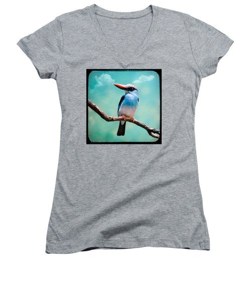 Blue Breasted Kingfisher Women's V-Neck