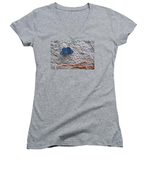 Blue Butterfly Myscelia Ethusa Art Prints Women's V-Neck T-Shirt (Junior Cut) by Valerie Garner