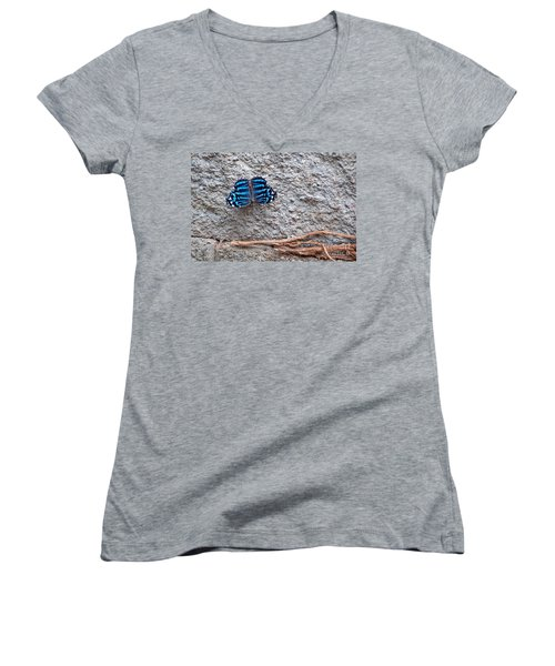 Blue Butterfly Myscelia Ethusa Art Prints Women's V-Neck T-Shirt