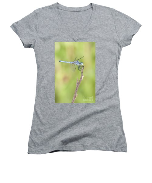Women's V-Neck T-Shirt (Junior Cut) featuring the photograph Blue Dasher by Bryan Keil