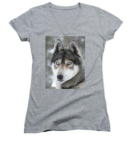Blue Eyes Husky Dog Women's V-Neck