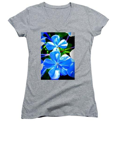 Blue Flower Women's V-Neck T-Shirt (Junior Cut) by David Mckinney