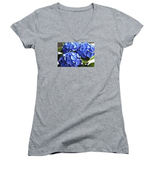 Blue Hydrangea Women's V-Neck T-Shirt