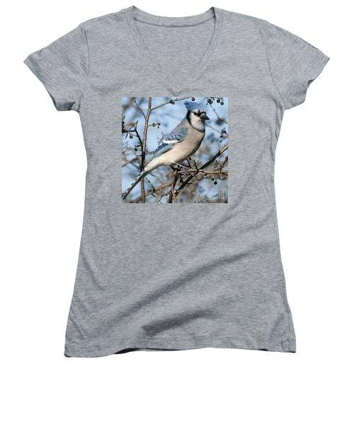 Blue Jay.. Women's V-Neck
