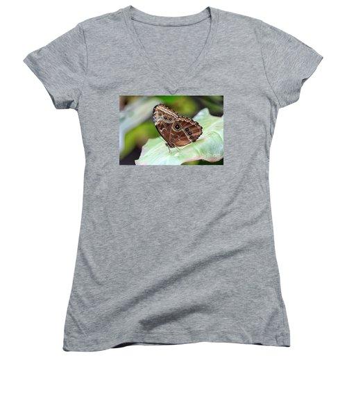 Women's V-Neck T-Shirt (Junior Cut) featuring the photograph Blue Morpho Butterfly by Teresa Zieba