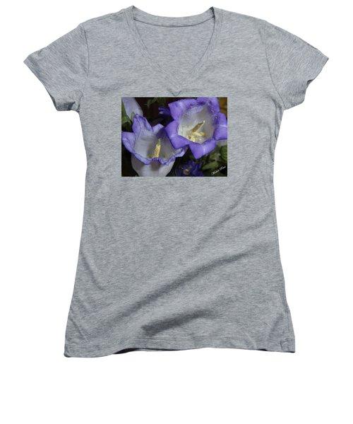 Blue Persuasion Women's V-Neck