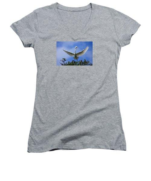 Blue Sky Landing Women's V-Neck (Athletic Fit)