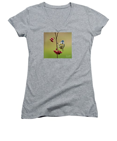 Blue Tit With Hawthorn Berries Women's V-Neck T-Shirt (Junior Cut) by Liz Leyden