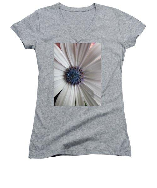 Blue-white Loveliness Women's V-Neck
