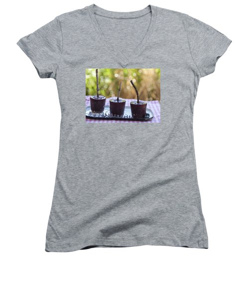 Blueberry Ice Pops Women's V-Neck T-Shirt