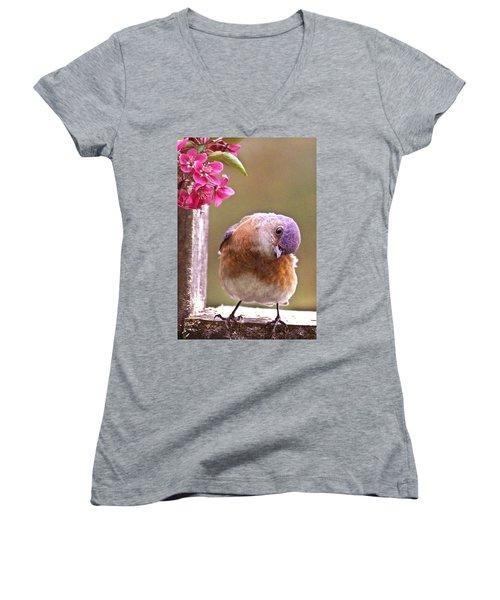 Bluebird Women's V-Neck T-Shirt