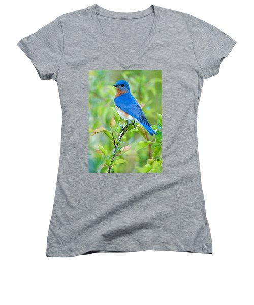 Bluebird Joy Women's V-Neck (Athletic Fit)