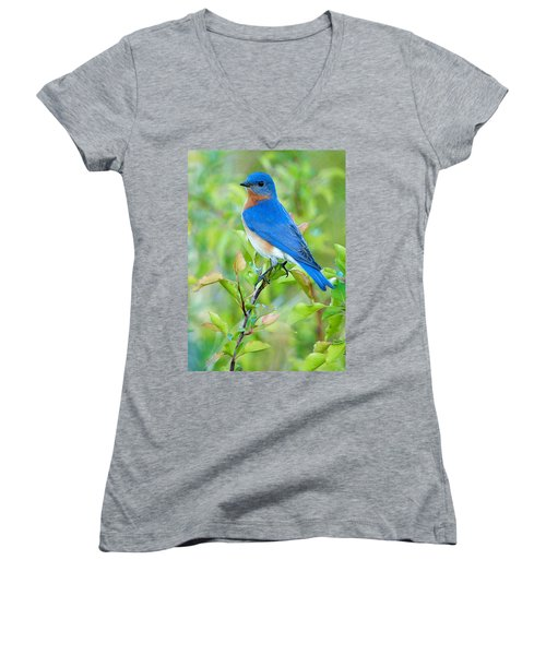 Bluebird Joy Women's V-Neck