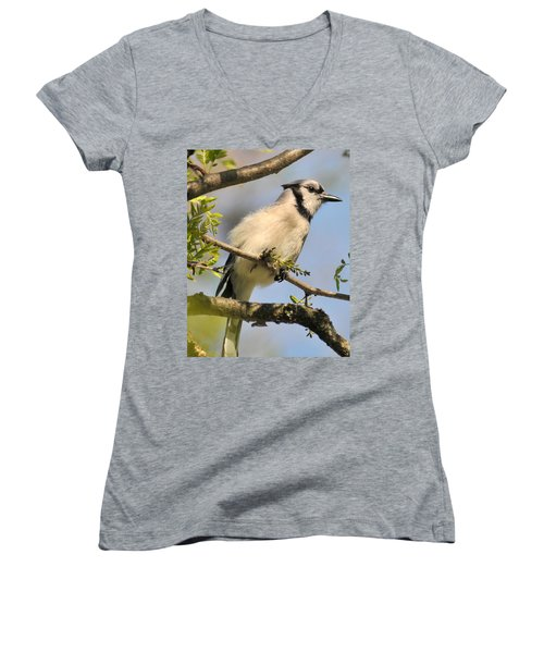Bluejay 310 Women's V-Neck T-Shirt