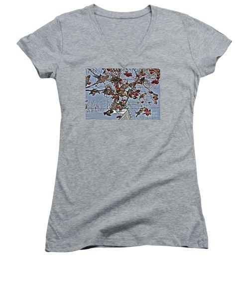 Bohemian Waxwing Feast Women's V-Neck T-Shirt (Junior Cut) by Linda Bianic