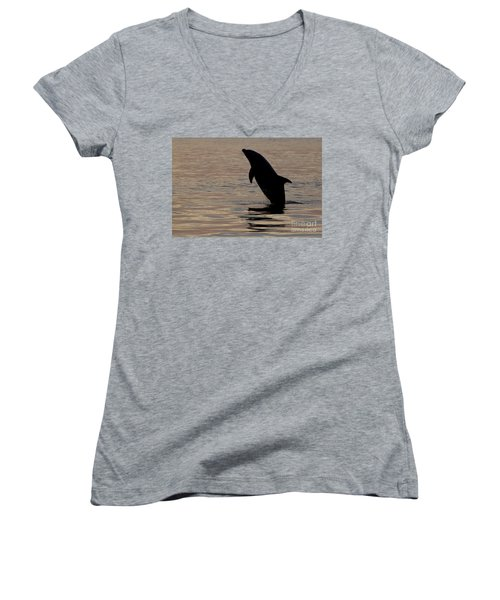 Bottlenose Dolphin Women's V-Neck T-Shirt